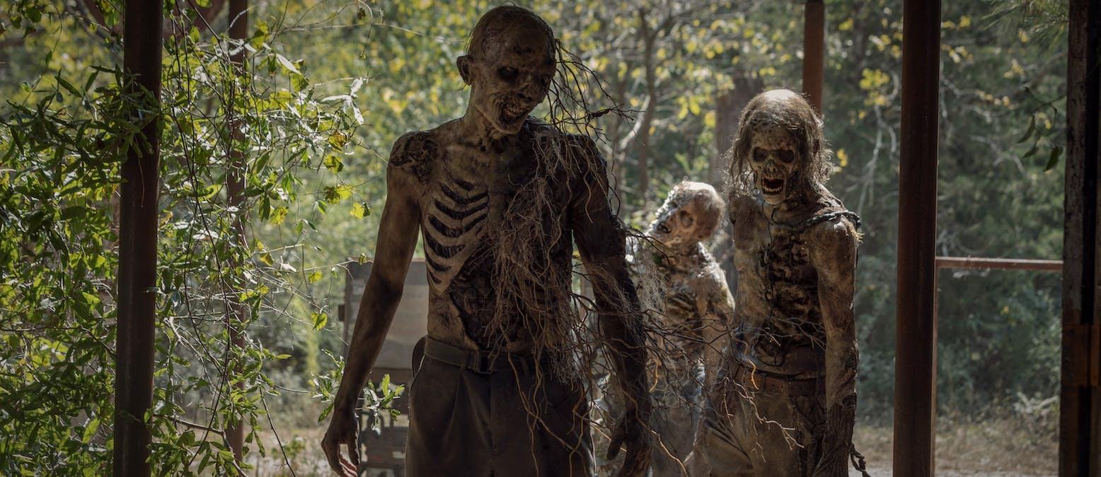 BEKRÄFTAT: Ny The Walking Dead-spinoff på gång